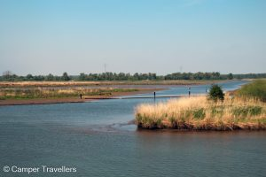 Rondvaart Biesbosch
